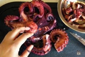 octopus_stifado05